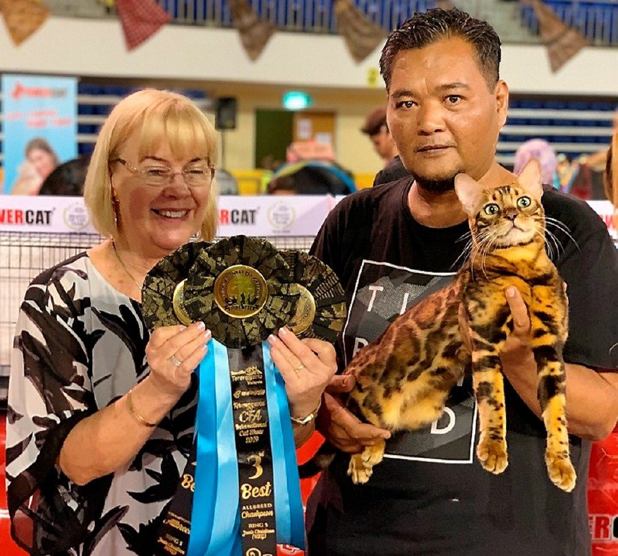 Abang Sukri Abang Bujang (right) from Bintulu and his male Bengal cat named Saladin receiving a trophy from one of the judges, at The Cat Fanciers' Association (CFA) International Cat Show in Terengganu recently. -NSTP/courtesy of NST reader