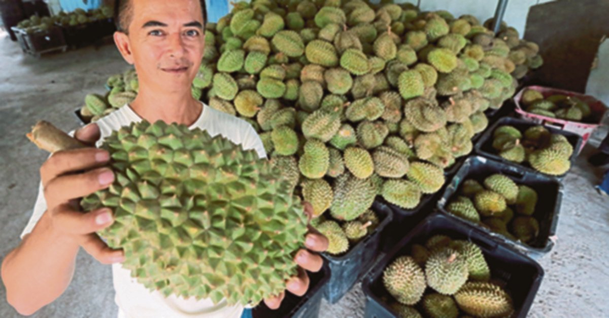 From Small Time Durian Seller To Exporter