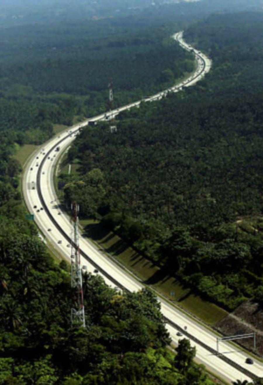 PLUS Malaysia Bhd's green initiative of planting almost half a million teak trees along the North-South Expressway (NSE) back in 1997 appears to be bearing fruit.