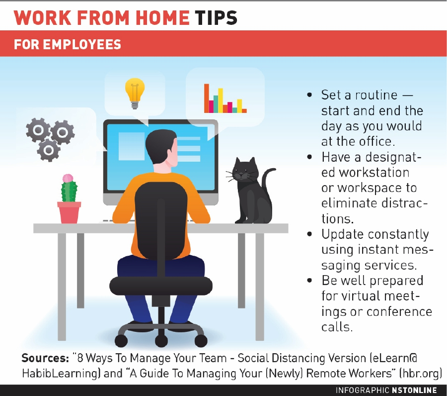 The Work From Home Revolution