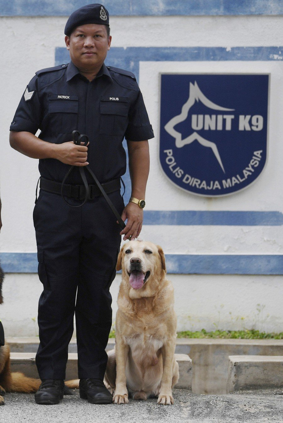 Tho, a Labrador, was born on Jan 30, 2008, in China and served as a narcotics sniffer dog with Sergeant Patrick Sandai. -- Bernama File Pix
