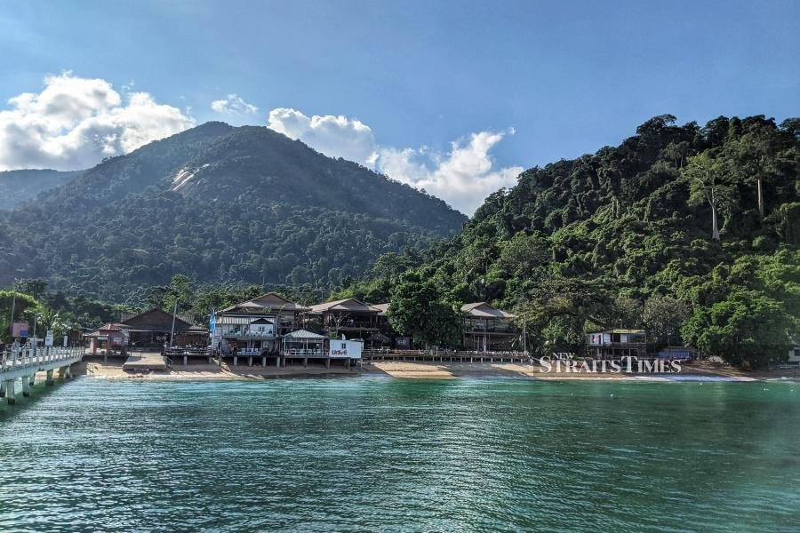 The waters of Tioman draw visitors each year, many of whom remain oblivious to the rainforest behind it.